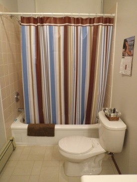 striped shower curtain bathroom